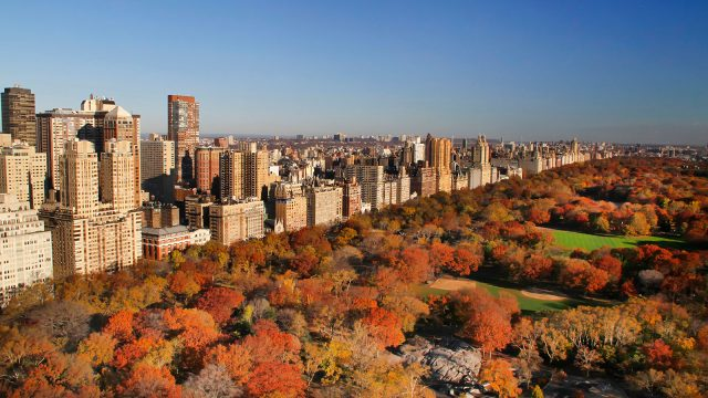 Great ways to spend a day in New York City